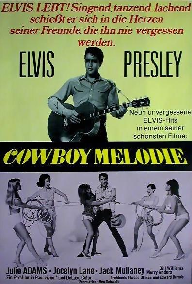 Cowboy-Melodie