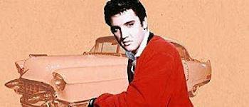 Elvis - Populäre Irrtümer und andere Wahrheiten (nicht für Klugscheißer)